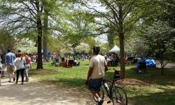 dogwood-festival-2014-atlanta-ga-21