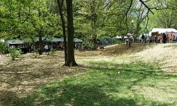 dogwood-festival-2014-atlanta-ga-15