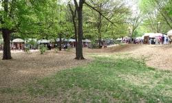 dogwood-festival-2014-atlanta-ga-16