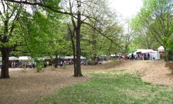 dogwood-festival-2014-atlanta-ga-18
