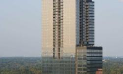 atlanta-luxury-townhome-or-condo-property-ga-113