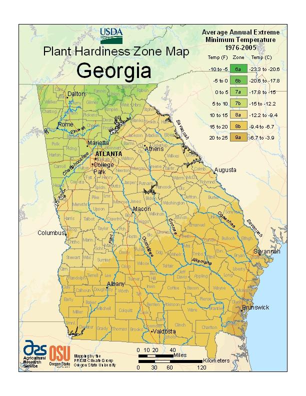 Plant Zone Map Georgia Atlanta Ga Garden Resources Atlanta Zones